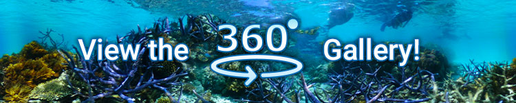 Ocean Spirit Virtual 360° Tour